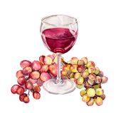 Glass with red wine, grape. Watercolour Royalty Free Stock Images