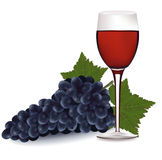 Glass of red wine and a grapes. Royalty Free Stock Images