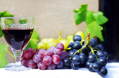 Glass of red wine with grapes Royalty Free Stock Photography