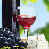 Glass of red wine with grapes Royalty Free Stock Images