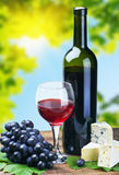 Glass of red wine with grapes Stock Images