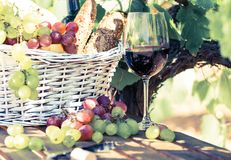 Glass of red wine grapes and picnic basket on table in field Stock Photography