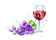 Glass of a red wine and grapes. Picture of a alcoholic drink.Watercolor hand drawn illustration Royalty Free Stock Photos