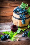 Glass of red wine and grapes in a wooden cellar Royalty Free Stock Images