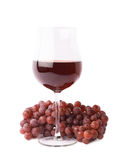 Glass of red wine next to a branch of grapes Royalty Free Stock Images