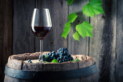 Glass of red wine and on old oak barrel. On wooden background royalty free stock photography
