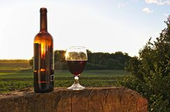 Glass of red wine with bottle on tree stump with green fields, bush and sunset in the background Stock Photo