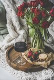 Glass of red wine, snacks and tulips over knitted blanket royalty free stock image