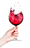 Glass of red wine with splashes in hand isolated Stock Photo