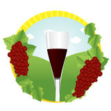 Glass of red wine. And two bunches of grapes against green field Royalty Free Stock Images