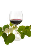 Glass of Red Wine and Vine Leaves Royalty Free Stock Photography