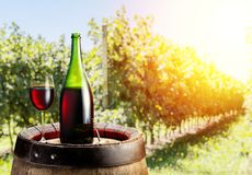 Glass of red wine and wine bottle on the oak keg. Vineyard in th. E evening sun at the background Royalty Free Stock Photos