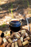 A glass with a red wine and wine corks on a stump in a summer forest stock images