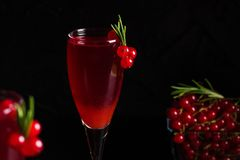 Glass of redcurrant wine drink juice decorated with rosemary berries. Glass of redcurrant wine drink juice decorated with rosemary and berries on dark wooden royalty free stock photos