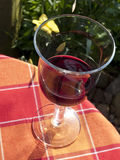 Glass of redwine. Gardenscene with a glass of redwine Royalty Free Stock Photos