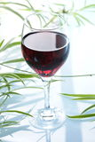 Glass of redwine. Against some leaves in the background Royalty Free Stock Photo