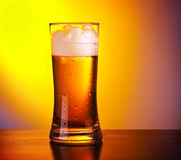Glass of refreshing beer Royalty Free Stock Photo
