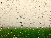 Glass regn Fotografering för Bildbyråer