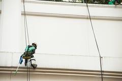 Glass rengöringsmedel som abseiling från en högväxt byggnad Fönsterrengöringsmedel på royaltyfri bild