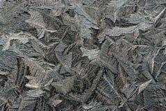 glass rimfrost Arkivfoton