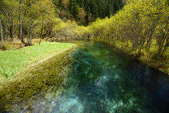 Glass river in Jiuzhaigou Valley. With Cloud reflected in water Royalty Free Stock Photo