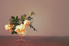 glass ro Royaltyfri Bild