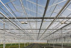 Glass roof of a big Dutch greenhouse Stock Image