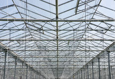 Greenhouse roof Stock Image
