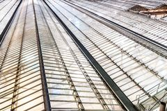Glass roof. Illumination of glass roof of train station royalty free stock image