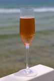 Glass with rose champagne Royalty Free Stock Photo