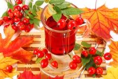 Glass of rose hip tea. Glass of fresh herbal rose hip tea stock photos
