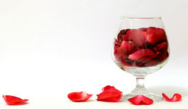 A glass of Rose petals. Rose petals inside and outside the glass Stock Images