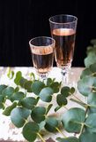 Glass of rose wine. Eucalyptus branches on an old table with a glass of rose wine, close-up Stock Image