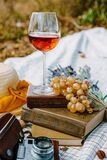 Glass of rose wine on a provencal style autumn picnic