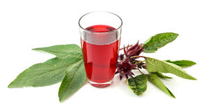 Glass of roselle juice on white Royalty Free Stock Photography