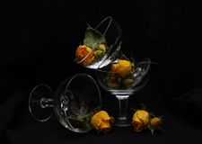 Glass and roses. Yellow roses in glass wine glasses (on a black background stock photos