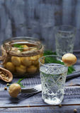 Glass of Russian vodka and pickled mushrooms Stock Photo