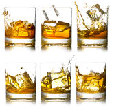 Glass of scotch Stock Images