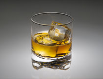 Glass of scotch on gray. Glass of scotch,bourbon or whiskey on gray with spot under light royalty free stock photos