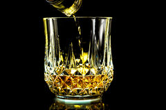 Glass of scotch Stock Image