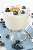 Vanilla yogurt with blueberries and granola Royalty Free Stock Photos
