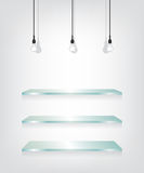 Glass shelves and bulb Royalty Free Stock Image