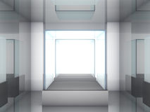 Glass showcase in the gallery Royalty Free Stock Photos