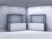 Glass showcases in the gallery Stock Photography