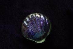 Glass skal på en purpurfärgad bakgrund Royaltyfria Foton