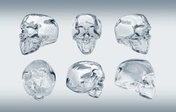 Glass skull. Many angle view Stock Images