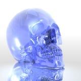 Glass skull. 3D render of blue glass skull on reflective surface royalty free illustration