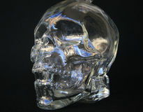 Glass skull with black back ground Stock Photography