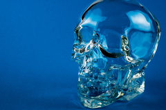 Glass skull with blue background Royalty Free Stock Photo