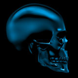 Glass skull Stock Photo